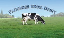 Fagundes Dairy